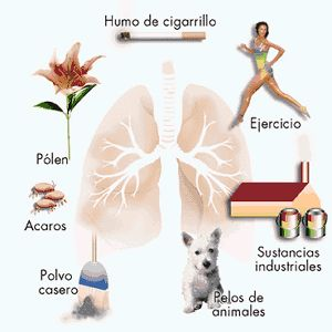 Deixar de fumar durante 5 meses da gravidez