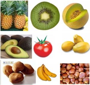 alergia a látex y frutas relacionadas