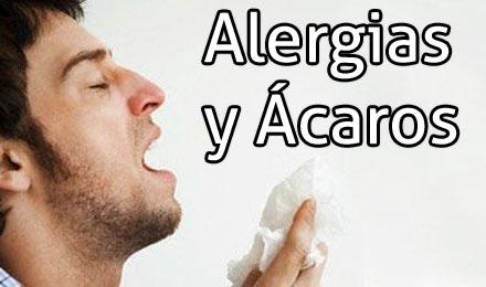 ALERGIA Y ÁCAROS