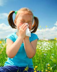 rinitis que dura lo que dura la primavera