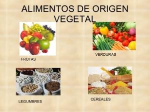 alimentos-de-origen-vegetal